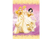 dagboek Disney prinsess